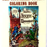 The Victorian Gothic Coloring Book 9780916144821